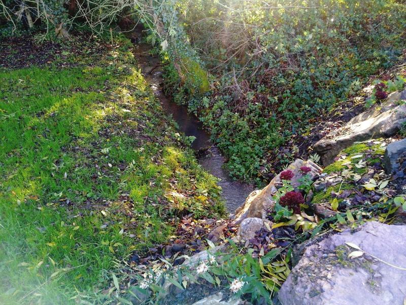 Les Achillées - Ruisseau